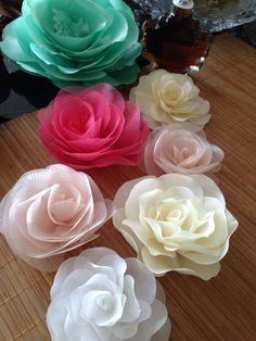 flores e cores by AureaMariz