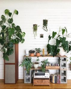 Our Buyer And Gm Arianatanabe Moved Homes Recently. It's Amazing How Quickly She's Created A Dreamy Plant-Filed Wonder Space. House Plants Decor, Plant Decor, Cinder Block Shelves, Cinder Blocks, Cinder Block Furniture, Concrete Furniture, Creation Deco, Home Decor Trends, Interior Design Living Room