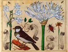 "Vintage Printable E Book PDF: ""Livres de Fleurs"" (1620) Birds and Flowers"