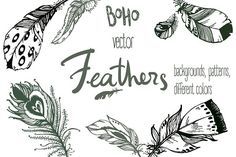 Vector boho feathers. Designs @graphicsmag