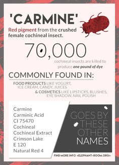 Carmine is derived from crushed cochineal insects. Many vegans avoid food and makeup containing carmine. Helpful guide to avoiding products with carmine. Farmasi Cosmetics, Vegan Facts, Vegan Quotes, Vegan News, Vegan Makeup, Cruelty Free Makeup, Vegan Beauty, Belleza Natural, Vegan Lifestyle