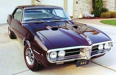1967 Pontiac Firebird 400.  If I had a left nut, I would sell it to get this car.  It's perfect and its purple!