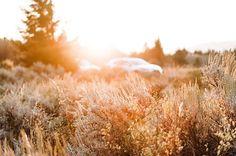 """OK VOTE: do you want to see a photo of 1) the teton mountains 2) snake river or 3) desert self portrait?! comment and I'll post tomorrow whichever gets the most votes!"" by @rachelynn.photography. #eventplanner #weddingdesign #невеста #brides #свадьба #junebugweddings #greenweddingshoes #destinationweddingphotographer #dugunfotografcisi #stylemepretty #weddinginspo #weddingdecor #weddingstyle #destinationwedding #weddingflowers #weddingdetails #luxurywedding #engagement #theknot #prewedding…"