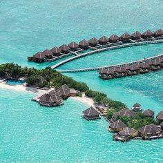 Taj Exotica Resort & Spa—Male, Maldives. #Jetsetter