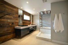 Υλικά όπως το ξύλο, τα κρύσταλλα σε διάφορα χρώματα οι καθρέπτες έχουν δώσει μια διαφορετική πιο μοντέρνα αίσθηση στα μπάνια των σύγχρονων σπιτιών.