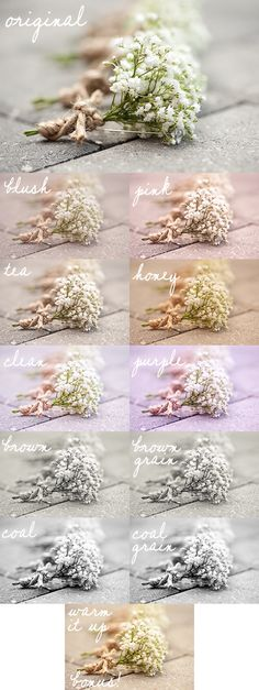 Julie Paisley Photography is amazing and now you can get presets?? I need these too :p