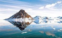 A family-friendly cruise through the 'summertime' waters of the High Arctic gave Dale Templar an unforgettable brush with the beasts of the northern wild. Arctic Cruise, Family Friendly Cruises, Close Encounters, Natural Scenery, The Good Place, Summertime, Waterfall, Around The Worlds, Bear