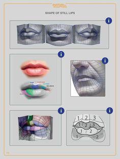 Anatomy For Sculptors: Understanding the Human Figure - PDF (e-book) - Meridith Semiraz Head Anatomy, Anatomy Drawing, Muscle Diagram, Human Anatomy For Artists, Human Anatomy 3d, Anatomy Organs, Modelos 3d, Blender 3d, Anatomy Reference