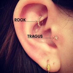 Got my rook done My plan for my right ear is adding the tragus and maybe a conch?