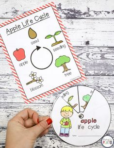 What a fun STEM center for kids! I could use this as a STEM box, makerspace or early finisher activity too. Apple Activities Kindergarten, Early Finishers Activities, New Years Activities, First Grade Activities, Fun Activities For Kids, Stem Activities, Preschool Apples, Kindergarten Centers, Apple Life Cycle