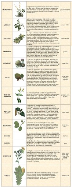 Teintures naturelles | quelles plantes utiliser