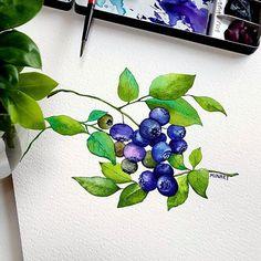 @minartillust - Illustrator Mina Park 미나뜨 | Watercolor Blueberries 파란하늘 파란블루베리 행복한 하루 보내세요 • • 수업문의는 블로그로(프로필링크) • 사진 퍼가지 마세요! 2차가공 ※저작권보호.도용.변형 copy※ • • #minartillust #미나뜨일러스트 #수채화클래스 #블루베리#blueberries #berryberry #flowerpainting #happyday #dailydrawing #fabriano #watercolors #danielsmith #danielsmith #다니엘스미스 #그림 #수채화 Watercolor Fruit, Watercolor Cards, Watercolor Illustration, Watercolour Painting, Watercolor Flowers, Watercolor Techniques, Botanical Prints, Flower Art, Art Drawings