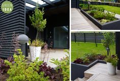 Green Garden, Outdoor Gardens, Home And Garden, Yard, Helsinki, Garden Ideas, Flowers, Plants, Houses