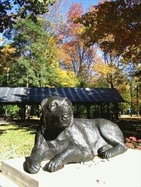 Beautiful Joe.....Meaford, Ontario, memorial to the dog which inspired a famous novel, which in turn kindled the campaign for humane treatment of animals.          Location: Ontario, Canada