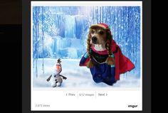 Cooper-koira ihastuttaa erilaisiksi Disney-hahmoiksi puettuna - katso hassut kuvat