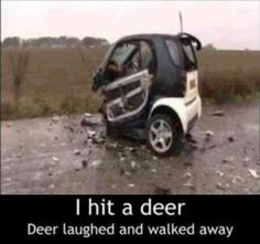 Smart cars would be a good idea...if they stayed on the go-cart track. GMHO #accidents