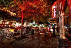 austin texas photography - Google Search