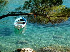 Croatia, Island Lošinj ღϠ₡ღ✻↞❁✦彡●⊱❊⊰✦❁ ڿڰۣ❁ ℓα-ℓα-ℓα вσηηє νιє ♡༺✿༻♡·✳︎· ❀‿ ❀ ·✳︎· SUN Aug 21, 2016 ✨ gυяυ ✤ॐ ✧⚜✧ ❦♥⭐♢∘❃♦♡❊ нανє α ηι¢є ∂αу ❊ღ༺✿༻♡♥♫ ~*~ ♪ ♥✫❁✦⊱❊⊰●彡✦❁↠ ஜℓvஜ