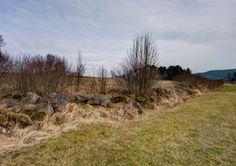 Lesesteinriegel wie hier im Waldviertel entstanden durch lange mühevolle Arbeit der Bauern.