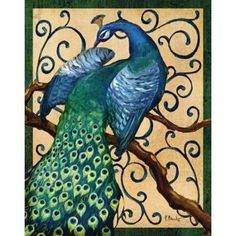 Majestic Peacock II Canvas Art - Paul Brent x Peacock Painting, Peacock Art, Peacock Feathers, Peacock Colors, Peacock Christmas Tree, Art Prints For Sale, Exotic Pets, Frames On Wall, Beautiful Birds