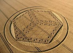 Crop Circles: The Work of Fallen Angels . Don`t be deceived: they are the work of demonic spirits.