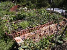 Trend Was ist Permakultur Und wie setz ich das f r meinen Garten um F r ein Basisverst ndnis lies doch einfach mal unseren Beitrag