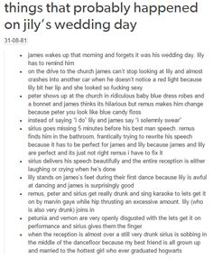 James and Lily´s wedding day - The Marauders
