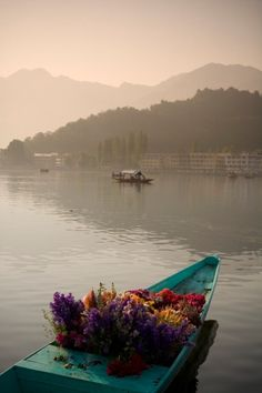 Srinagar, Kashmir, India. Although this is a picture of Dal Lake, which is the more popular of Srinagar's lakes, I liked Nagin Lake because I thought it was more quiet and restful.