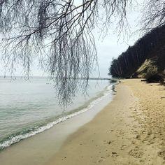 Czekamy na zielone listki #gdynia #wiosna #ilovegdynia #gdyniamojemiasto #plaża #spacer #wgdyninajlepiej #morze #bałtyk #trojmiasto…