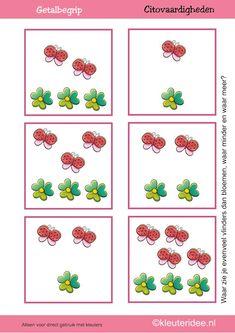 * Meten en getalbegrip, Waar zie je evenveel, waar meer en waar minder vlinders dan bloemen 1!