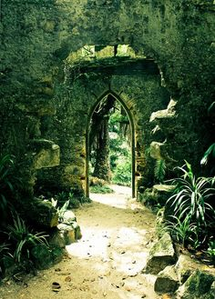 Personal Secret Garden, complete with arched doorway and mysterious plantings.