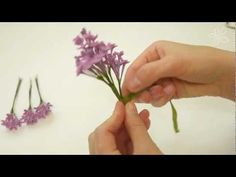 Good tutorial gorgeous lilacs