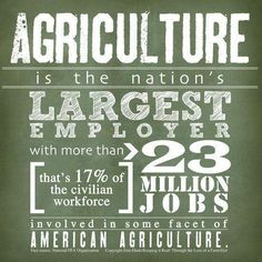 Twitter Agriculture Quotes, Agriculture Statistics, Agriculture Business, Agriculture Industry, Ag Science, Animal Science, Forensic Science, Life Science, Computer Science