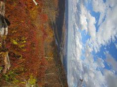 Trail Journals Photos - 2013 Appalachian Trail - Delaware River