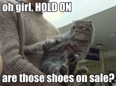 I'm not all girly girly, but I do love cats and shoes.