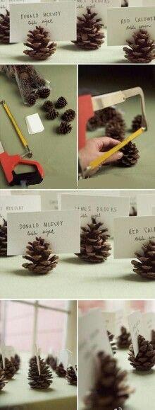 Pinecones placecards