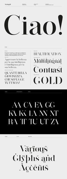 Seingalt Free Font - elgant serif font suitable for headlines Logo Fonts Free, Best Serif Fonts, Modern Serif Fonts, Free Typeface, Free Modern Fonts, Sans Serif Fonts, Font Logo, Best Free Fonts, Serif Typeface