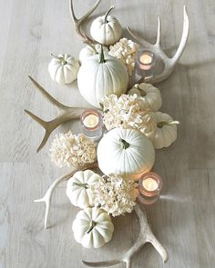 Who says your fall centerpiece has to be orange? Stunning fall centerpiece by tone on tone with muted colors, antlers, white pumpkins, and white hydrangeas. White Pumpkin Decor, White Pumpkins, Fall Pumpkins, Wedding Pumpkins, Pumpkin Wedding, Mini Pumpkins, Painted Pumpkins, Fall Home Decor, Autumn Home