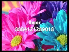 Amor 8884121289018 - Números Grabovoi - YouTube