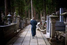 Monk walking in Okuno-in cemetery - Koya San, Japan