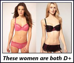 List of Celebrities with bra cup size D  FamousFix List