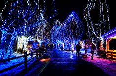 New Post blue christmas lights background interesting visit xmast. Christmas Live Wallpaper, Christmas Desktop, 3d Christmas, Merry Christmas To All, Outdoor Christmas, Christmas Pictures, Beautiful Christmas, Christmas Specials, Christmas Nativity