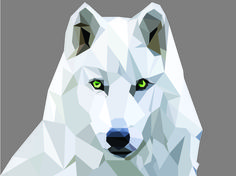 My own wolf creation. #wolf #geometric #design