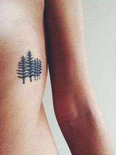 52 inspiré de la nature Tattoo Designs:
