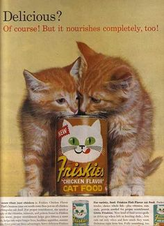 Friskies ad from 1962