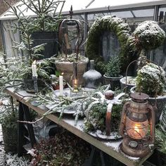 Looks to be a green Christmas this year, happy to like this color! F … - Trends Garden Decorations Christmas Garden, Christmas Porch, Farmhouse Christmas Decor, Noel Christmas, Outdoor Christmas Decorations, Green Christmas, Winter Garden, Rustic Christmas, Christmas Wreaths