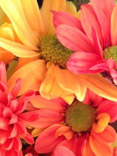 Some of my birthday flowers....