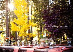 Weddings at the Tahoe Tree Company.