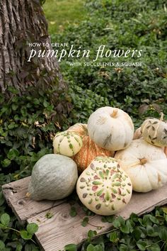 . decor pumpkin