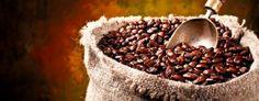 Café San Alberto, marca colombiana de sabor superior | La Patria